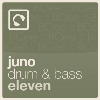 2011-01-05 - BCee - Juno Drum & Bass Podcast 11.jpg