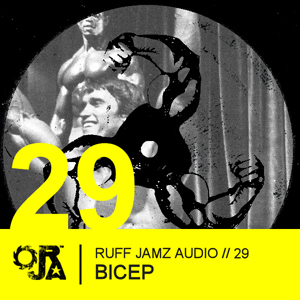 2010-11-30 - Bicep - Ruff Jamz Audio Podcast (RJA029).jpg