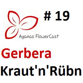 2013-06-02 - Kraut 'n' Rübn - Flowercast 19.png