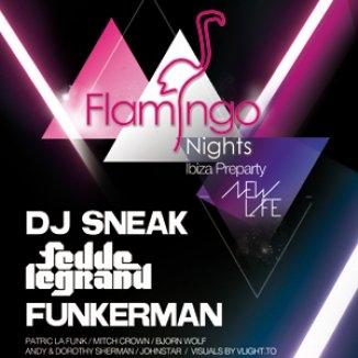 2009-07-21 - Flamingo Nights, Pacha, Ibiza.jpg