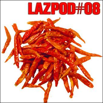 2008-07-15 - Damian Lazarus - Lazpod 8.jpg