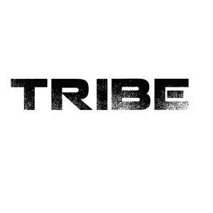 2011-07 - Bruce Haydn - Tribe (Promo Mix).jpg