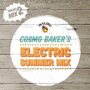 2013-05-29 - Cosmo Baker - Electric Summer Mix (Malibu Play Series 2).jpg