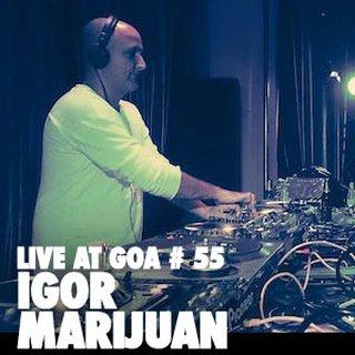 2014-12-25 - Igor Marijuan - Live At Goa 55.jpg