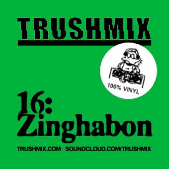2012-01-15 - Zinghabon - Trushmix 16.jpeg