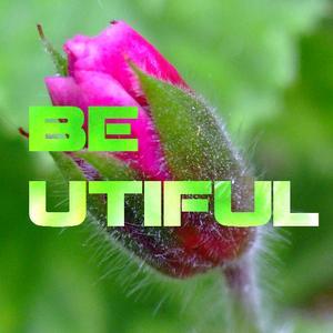 2011-07 - Bruce Haydn - Be Utiful 9.5.jpg