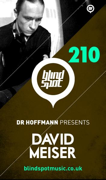 2013-06-10 - David Meiser - Blind Spot 210.jpg
