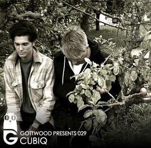 2012-04-01 - Cubiq - Gottwood 029.jpg