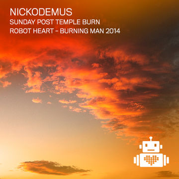 2014-08-31 - Robot Heart, Burning Man -2.jpg