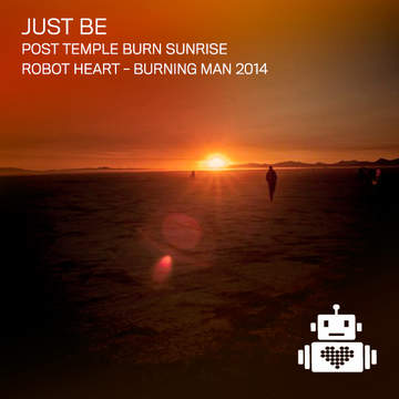 2014-08-21 - Robot Heart, Burning Man -2.jpg