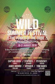 2016-08 - Wild Summer Festival.jpg