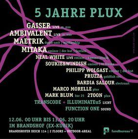 2010-06-13 - 5 Years Plux, Brandshof -3.jpg