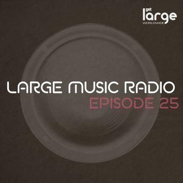 2014-11-06 - The Checkup - Large Music Radio 25.jpeg