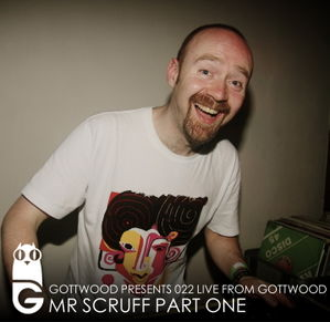 2011-07-26 - Mr. Scruff - Gottwood 022.jpg