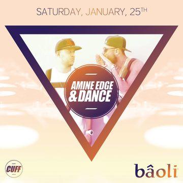 2014-01-25 - Amine Edge & DANCE @ Baoli.jpg