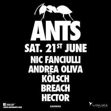 2014-06-21 - Ants, Ushuaia.jpg