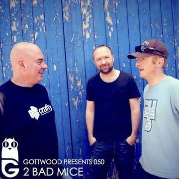 2013-05-15 - 2 Bad Mice - Gottwood 050.jpg