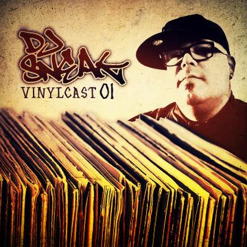 2012-12-11 - DJ Sneak - Vinylcast 01.jpg