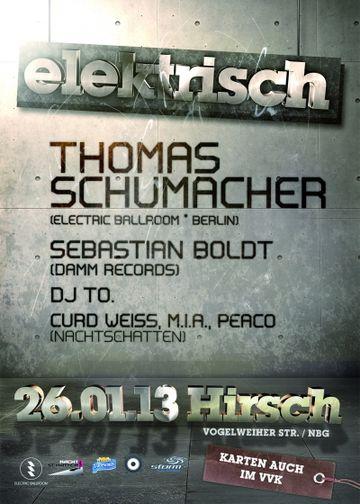 2013-01-26 - Elektrisch, Hirsch.jpg