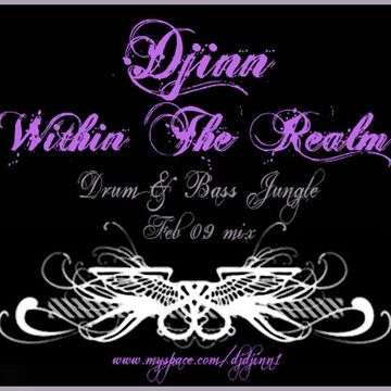 2009-02-09 - Djinn - Within The Realm (Promo Mix).jpg