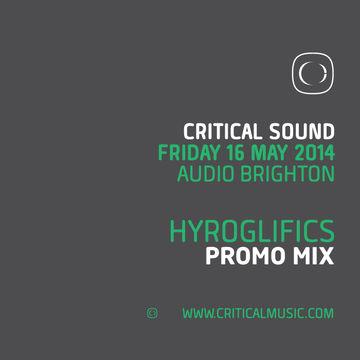 2014-05-02 - Hyroglifics - Critical Sound Brighton Promo Mix.jpg