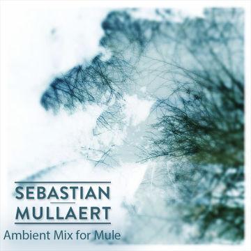 2014-09-22 - Sebastian Mullaert - Ambient Mix For Mule.jpg