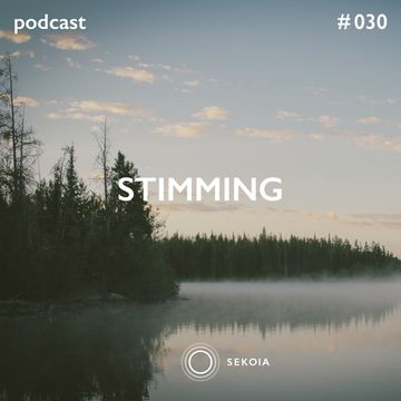 2014-12-23 - Stimming - Sekoia Podcast 030.jpg