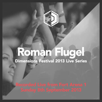 2013-09-08 - Roman Flügel @ Dimensions Festival.jpg