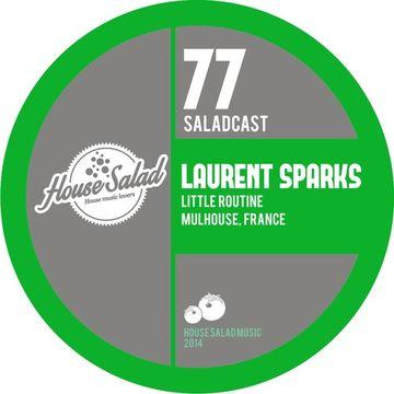 2014-05-01 - Laurent Sparks - House Saladcast 077.jpg