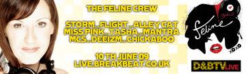 2009-06-10 - D&BTV Live 56 - Feline Takeover.jpg