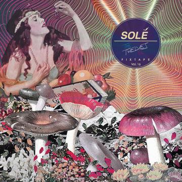 2013-08-26 - The Twelves - Solé Fixtape Vol. 16.jpg