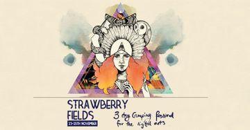 2012-11-2X - Strawberry Fields - 1.jpg