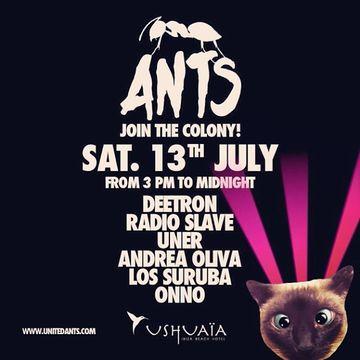 2013-07-13 - ANTS - Join The Colony!, Ushuaia.jpg