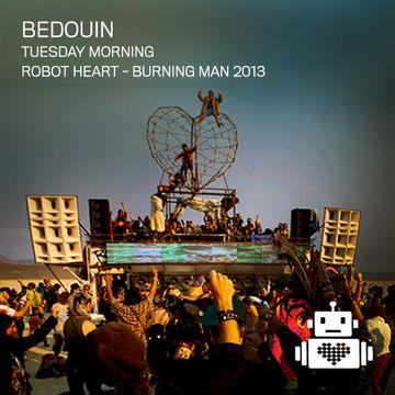 2013-08-26 - Robot Heart, Burning Man -2.jpg