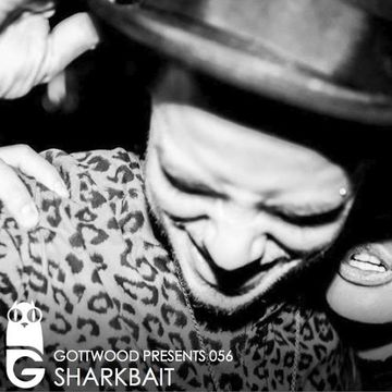 2013-06-13 - Shark Bait - Gottwood 056.jpg
