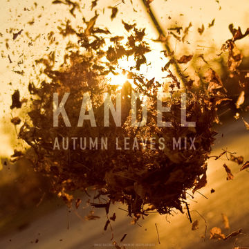 2009-11-14 - Kandel - Autumn Leaves.jpg