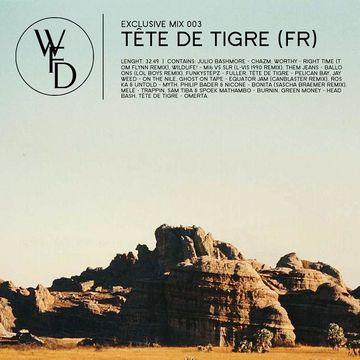 2011-03-18 - Tête de Tigre - What's For Dinna Exclusive Mix 003.jpg