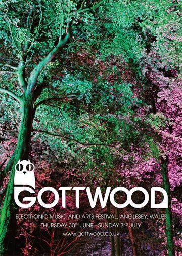 2011-0X - Gottwood Festival.jpg