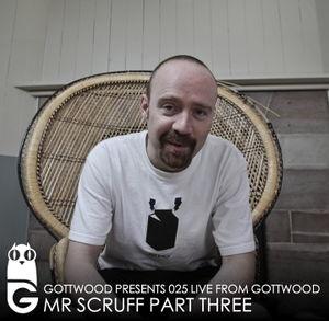 2012-02-13 - Mr. Scruff - Gottwood 025.jpg