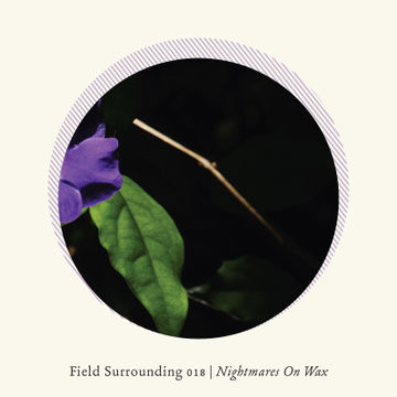 2014-02-21 - Nightmares On Wax - Field Surrounding 018.jpg