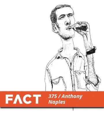 2013-03-25 - Anthony Naples - FACT Mix 375.jpg