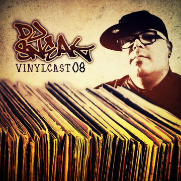 2014-02-19 - DJ Sneak - Vinylcast 08.jpg