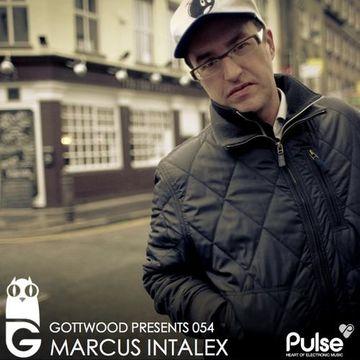 2013-06-05 - Marcus Intalex - Gottwood 054.jpg