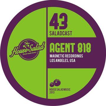 2013-12-04 - Agent 818 - House Salad Podcast 043.jpg