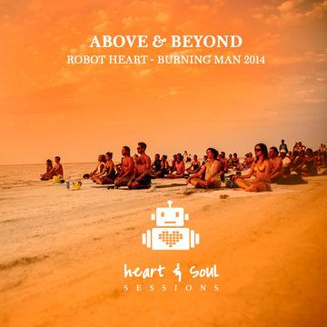 2014-07-30 - Robot Heart, Burning Man.jpg