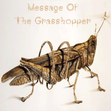 2011-06-07 - Osunlade - Message Of The Grasshopper.png