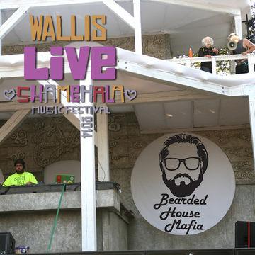 2014-08-29 - Wallis - Shambhala 2014 Live Mix Series 003.jpg