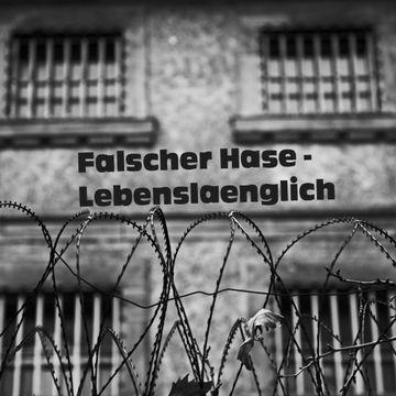 2011-12-31 - Falscher Hase - Lebenslänglich (December Promo Mix).jpg