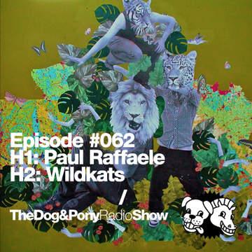 2012-05-16 - Paul Raffaele, Wildkats - Dog&Pony Show 062.jpg