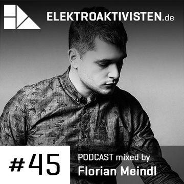 2014-02-21 - Florian Meindl - Techno Treatment (elektroaktivisten.de Podcast 45).jpg